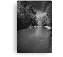 Lonely River Canvas Print