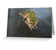 Waiting in Anticipation Greeting Card