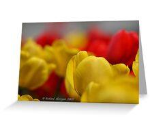 Tulips :) Greeting Card