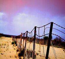 Rabbit Proof Fence by Blake Johnson