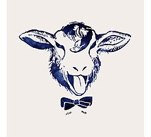 Cheeky sheep with a bow tie Photographic Print