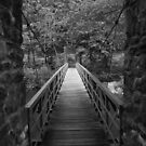 Walking bridge to paradise by Bigart32