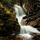 Crater Falls - Cradle Mountain by Ian Stevenson