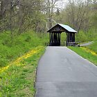 Springtime on the Covered Bridge Trail by Debbie Meyers