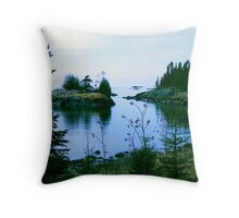 Sweetgrass Cove, Northern Minnesota Throw Pillow