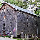 Bear's Mill by Monnie Ryan
