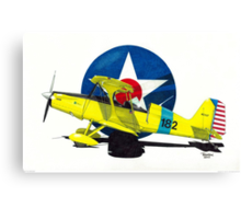 """""""Air Force Starduster"""" Canvas Print"""