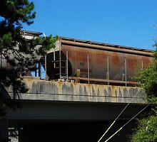 Rust and Train cars by Martha Andreatos