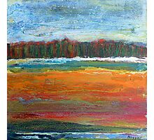 The picnic spot, mixed media on canvas Photographic Print