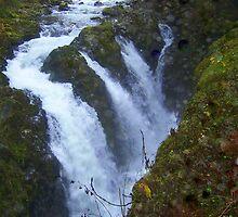 """Soleduck Falls"""" by Lynn Bawden"""