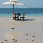 Lunchtime in Mauritius by MikeyLee