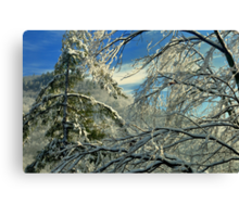 Warm in Your Embrace Canvas Print