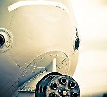 Big Gun A-10  by ROGUEstudio