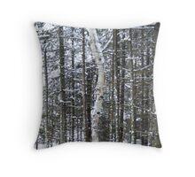 Lone Birch  Throw Pillow