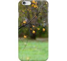 Riverside park iPhone Case/Skin