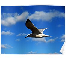 Glide Poster