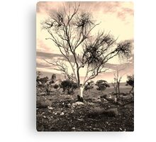 The Poisoned Kiss of Mistletoe Canvas Print