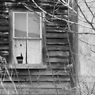 Window Of Past - Maine by mooselandtours
