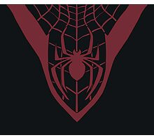 All-New Ultimate Spider-Man Photographic Print