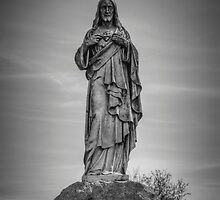 The Sacred Heart by Eric Scott Birdwhistell