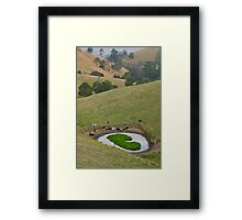 Cows at rest before hill-walking. Gippsland, Victoria. Framed Print