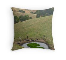 Cows at rest before hill-walking. Gippsland, Victoria. Throw Pillow