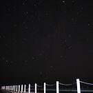 Late Night Dip by Chris Jallard