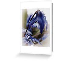 Springs Little Joys  Greeting Card