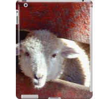 Sheep through Red Picket Fence iPad Case/Skin