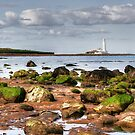 St Mary's Lighthouse by Ray Clarke