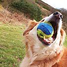 saz...has the ball by xxnatbxx