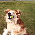 saz...jumped to catch the ball by xxnatbxx
