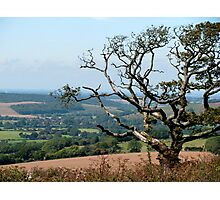 Across the valley Photographic Print