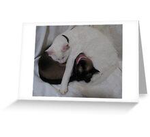 Louie loves Daisy Greeting Card