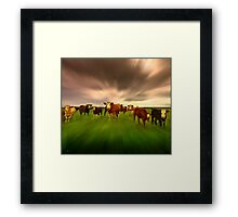 While The Bull Sleeps Framed Print