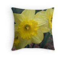 Yellow Daffodils Throw Pillow