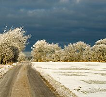 Winter landscape. Snowstorm coming up by Nordlys
