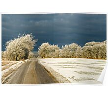 Winter landscape. Snowstorm coming up Poster