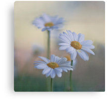 The beauty of the common Canvas Print