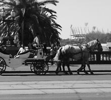 Cruising past the MCG by Debbie Thatcher