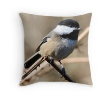 Chickadee Sunbath Throw Pillow