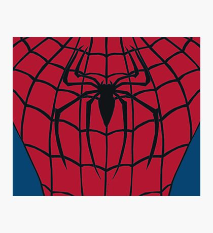 Your friendly neighbourhood Spider-Man Photographic Print