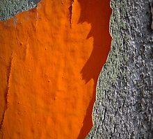 Big Orange Peeler by Susana Weber