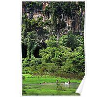Swiming into the Wild II - Thakhek, Laos. Poster