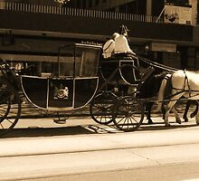 Horse and Carriage by Debbie Thatcher