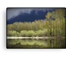 Trees of Spring Canvas Print