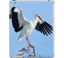 White Stork On Snow Covered Tree iPad Case/Skin