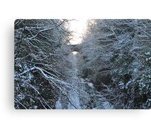 Dreaming of Narnia Canvas Print