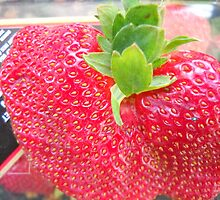One Strawberry by Mimmie Hunter