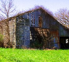 Open barn where weather has taken its toll by David Owens